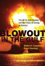 Blowout in the Gulf - The BP Oil Spill Disaster and the Future of Energy in America