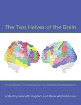 Two Halves of the Brain - Information Processing in the Cerebral Hemispheres