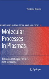 Molecular Processes in Plasmas - Collisions of Charged Particles with Molecules