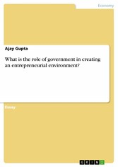 What is the role of government in creating an entrepreneurial environment?