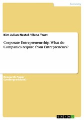 Corporate Entrepreneurship. What do Companies require from Entrepreneurs?