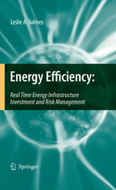 Energy Efficiency - Real Time Energy Infrastructure Investment and Risk Management